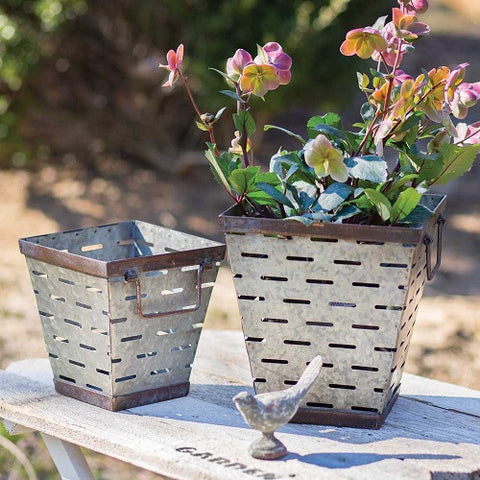 Tapered Square Olive Buckets- Set of Two