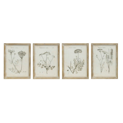 Vintage Inspired Botanical Prints- Set of Two