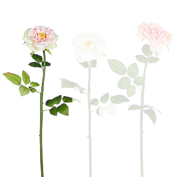 Rose Stems - Set of Two