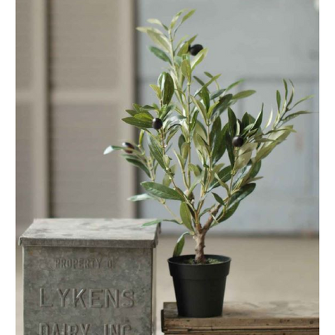 Faux Potted Olive Bush
