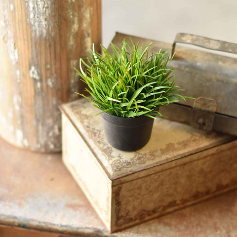 Potted Faux Wheatgrass- Set of Two
