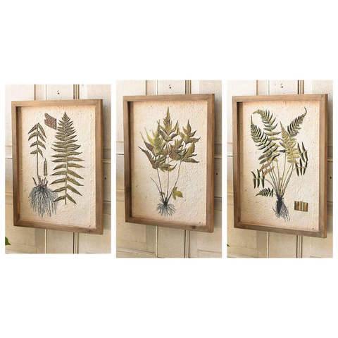 Royal Botanical Framed Art - Three Styles