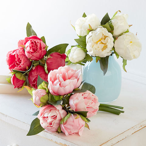Peony Bundle - Three Colors