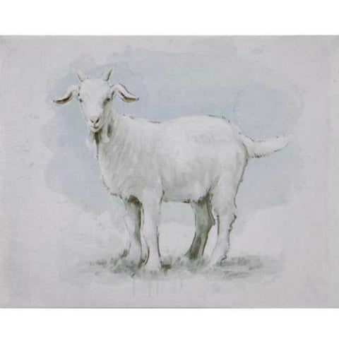 Canvas Wall Decor featuring barnyard Goat