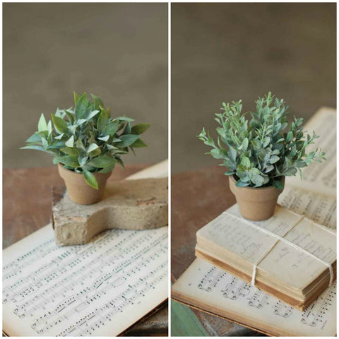 Faux Potted Herbs - Two Styles