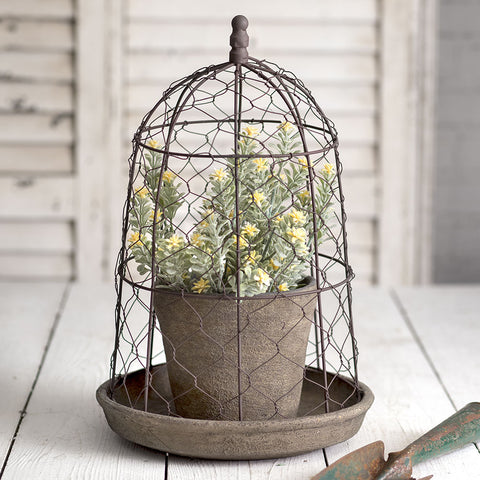 Wire Cloche with Terra Cotta Pot and Saucer