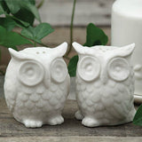 Ceramic Owl Salt and Pepper Set of Two