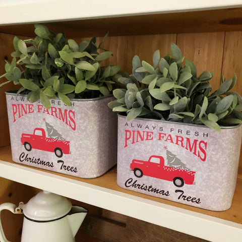 Pine Farms Bucket - Set of Two
