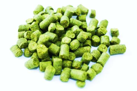 Hallertau Traditional Hops 100g
