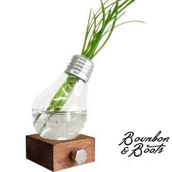 Handcrafted Incandescent Light Bulb Planters image