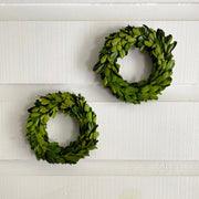 Boxwood Mini Wreath
