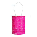 Soji Stella Dream Raspberry Lantern by Allsop