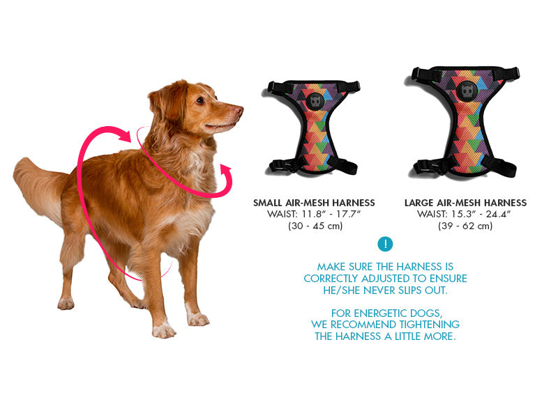 Dog Harness Monoby Air Mesh Zee Dog
