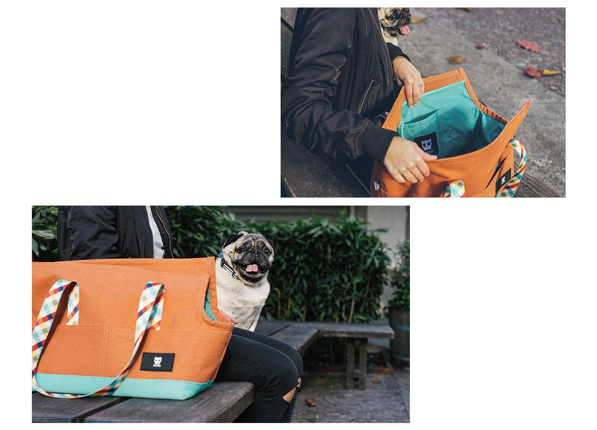 Pug in a Phantom Carrier