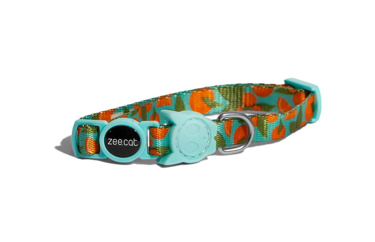 Florida | Cat Collar