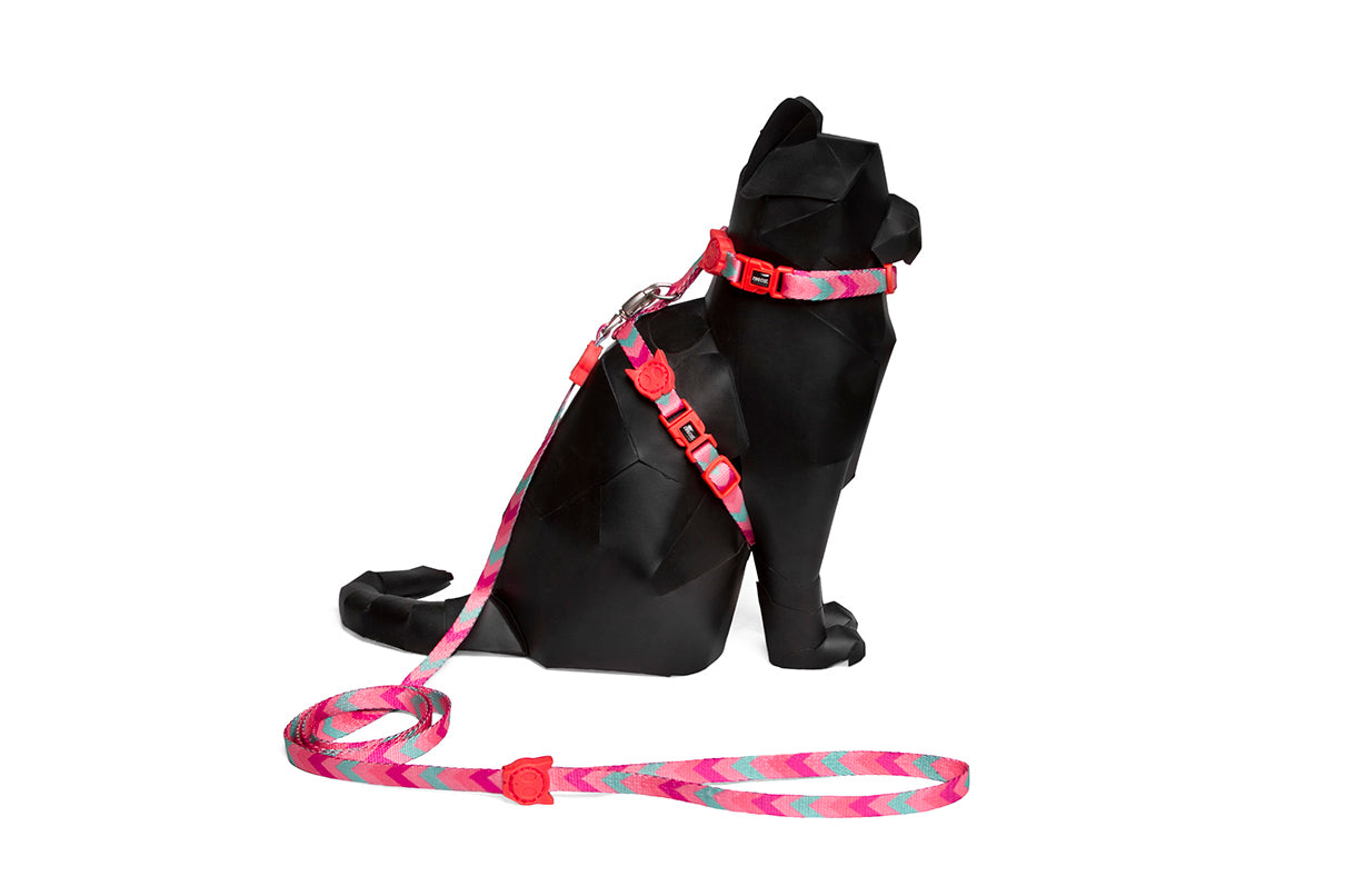 cat-harness-oh-la-la-zeecat-pet-info-image