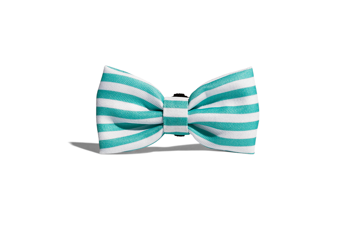 Florida | Dog Bow Tie