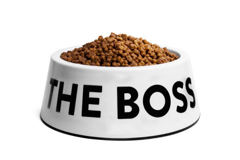 The Boss White | Dog Bowl
