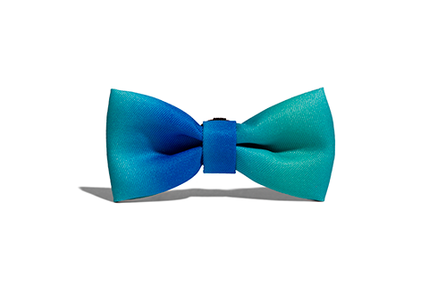 Tide | Dog Bow Tie