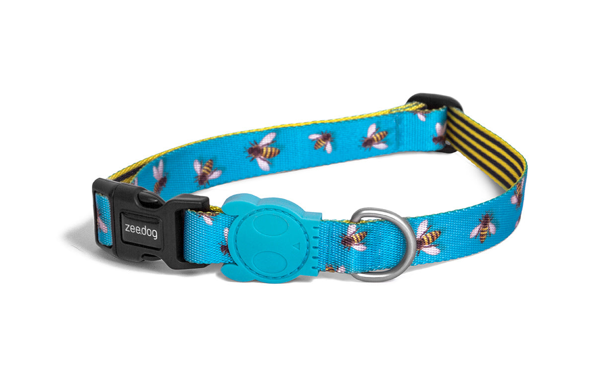 dog-collar-buzz-zeedog-pet-info-image