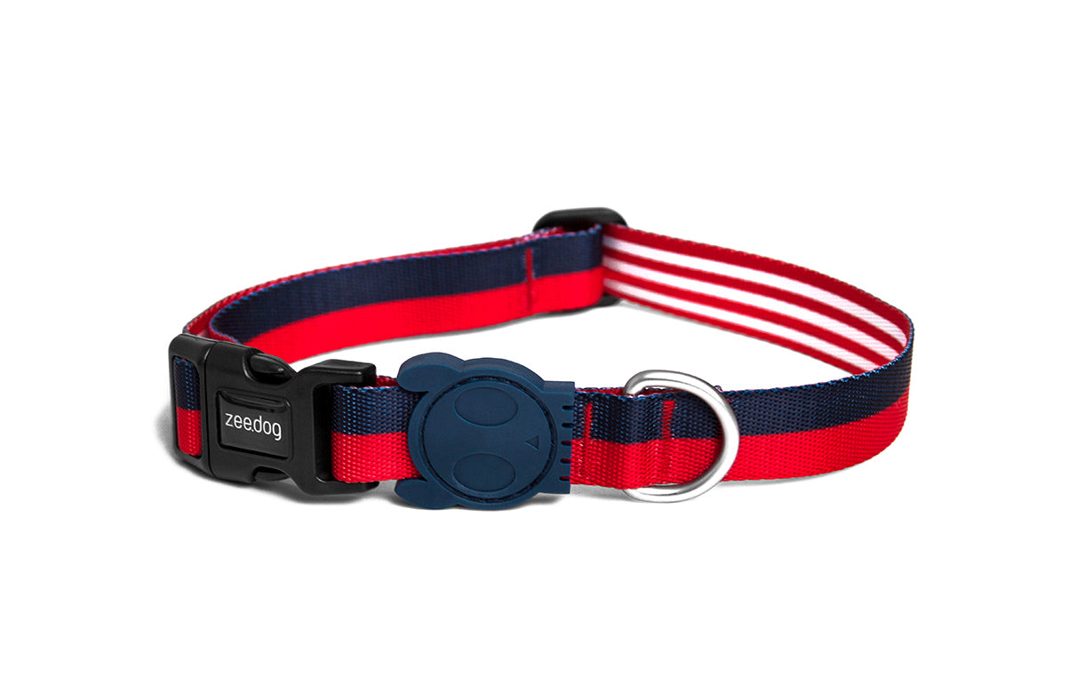 dog-collar-cadillac-zeedog-pet-info-image