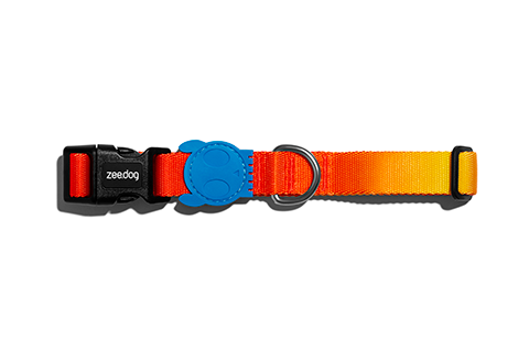 Solaris | Dog Collar