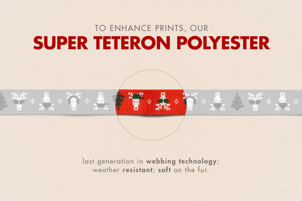 Rudolph | Dog Collar | Christmas Limited Edition | Super Tereron Polyester