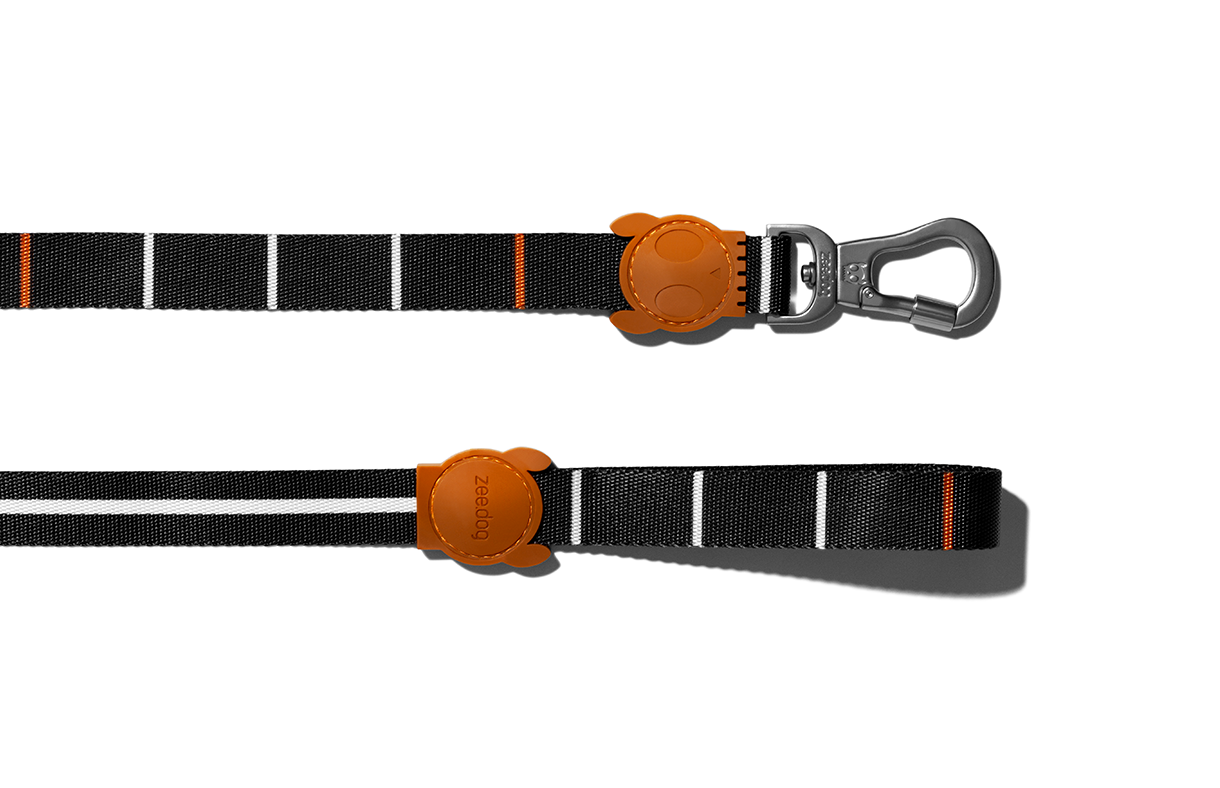 Patagonia | Dog Leash