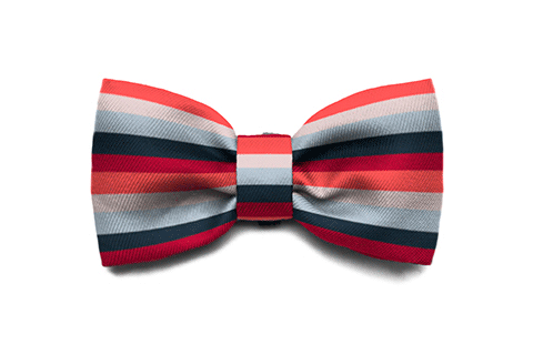 Oregon Bow Tie | Zee.Dog