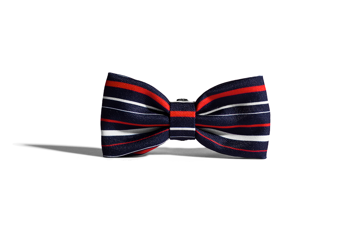 Rocket | Dog Bow Tie