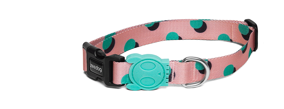 Polka | Dog Collar