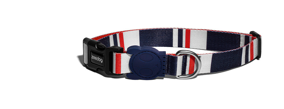 Rocket | Dog Collar