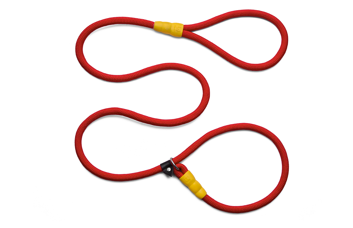 Peralta | Slip on Dog Leash