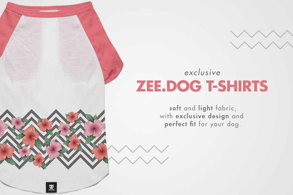 T-Shirt Feature | Zee.Dog