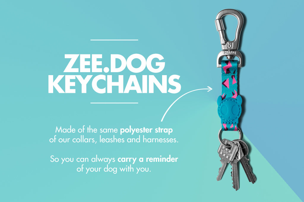 Crosby Keychain Feature | Zee.Dog