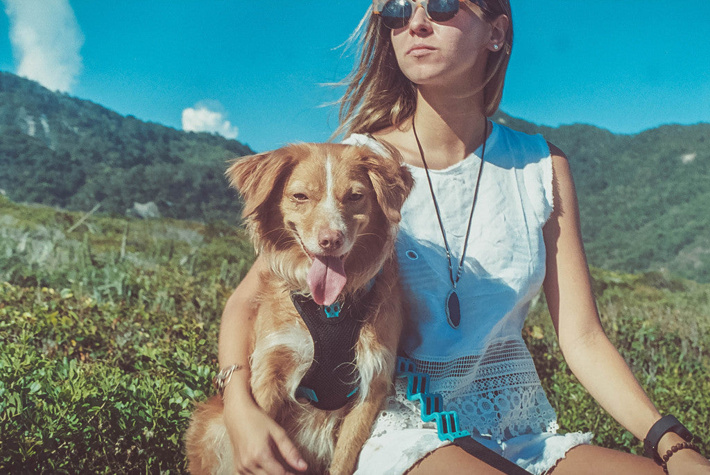 Girl holding a dog wearing Monoby air mesh harness | Zee.Dog