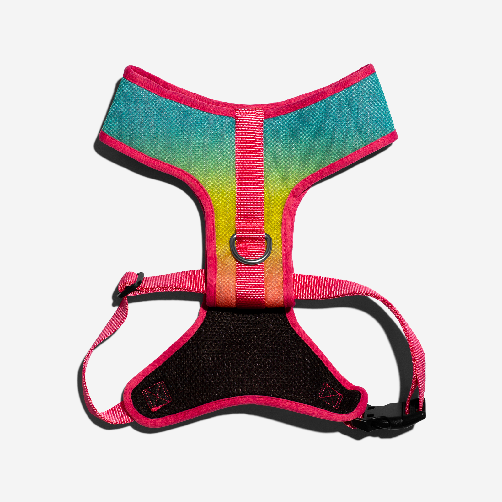 Citrus | Dog Air Mesh Harness