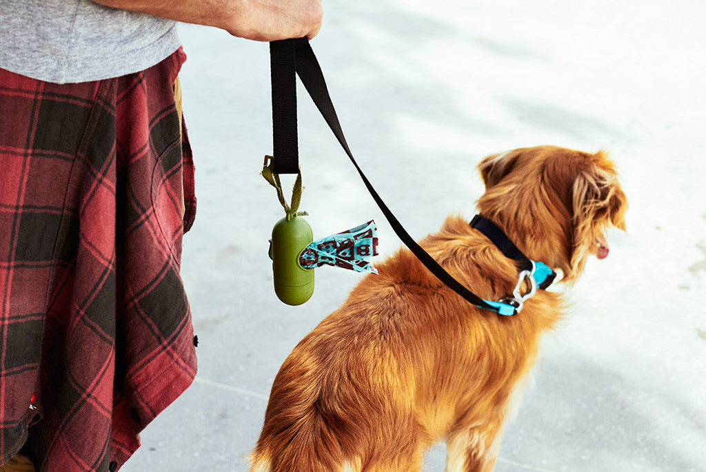 Dispenser with Green/Brown poop bag inside | Zee.Dog