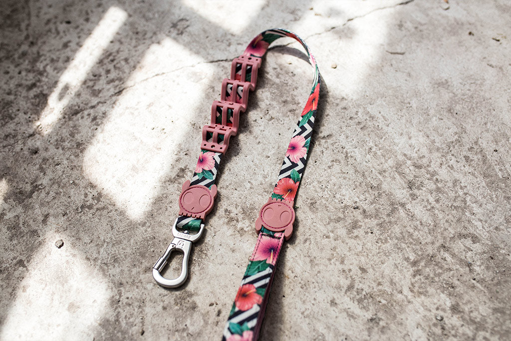 Mahalo Shock Absorbent Leash | Zee.Dog