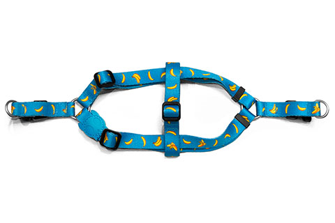 step-in-dog-harness_banana_shake_zeedog_pet_active