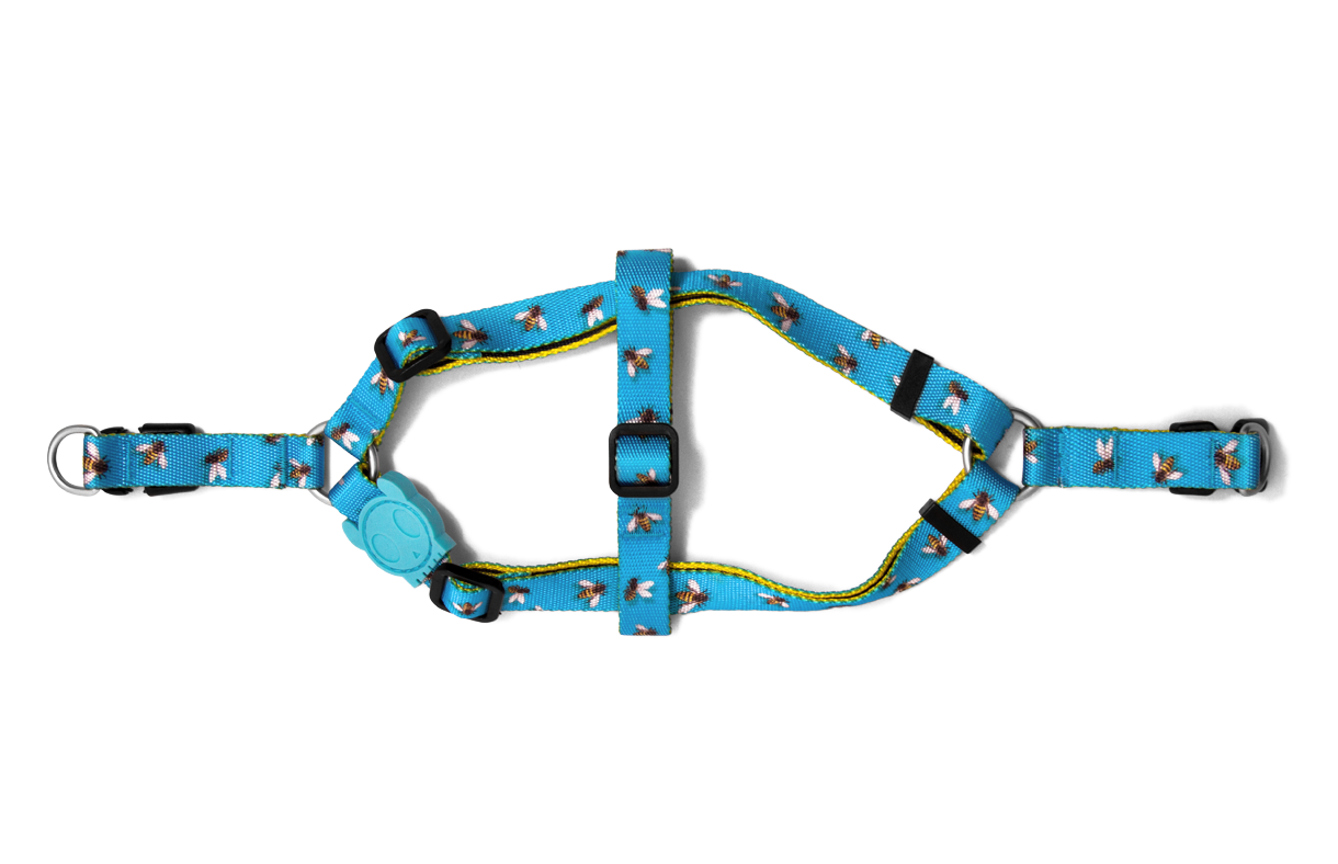 Buzz | Step-in Dog Harness