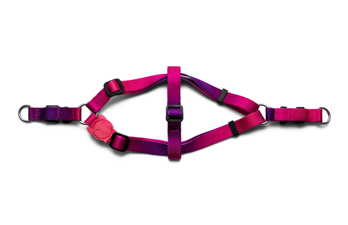 Juno | Step-in Harness
