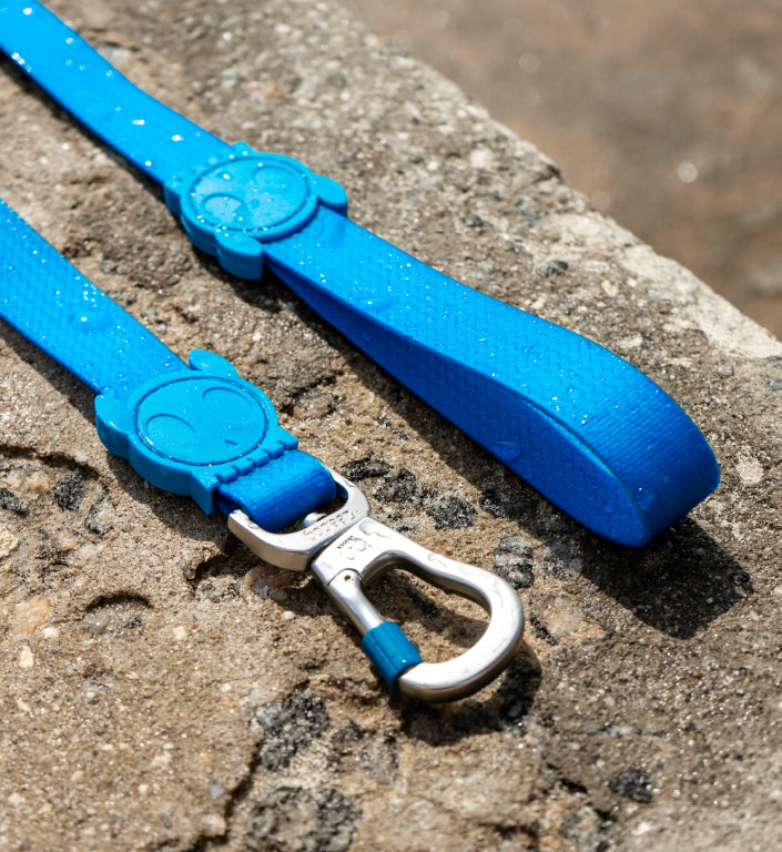 Neopro Blue | Leash