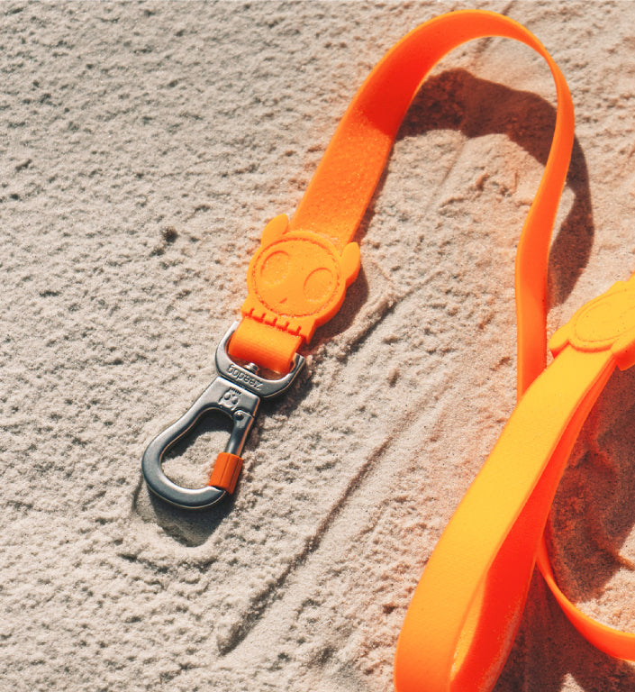 Neopro Tangerine | Leash