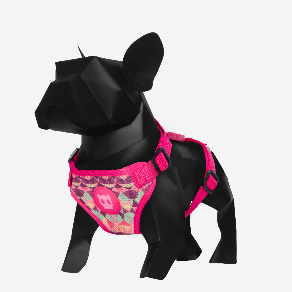 Skyfall | Air Mesh Dog Harness
