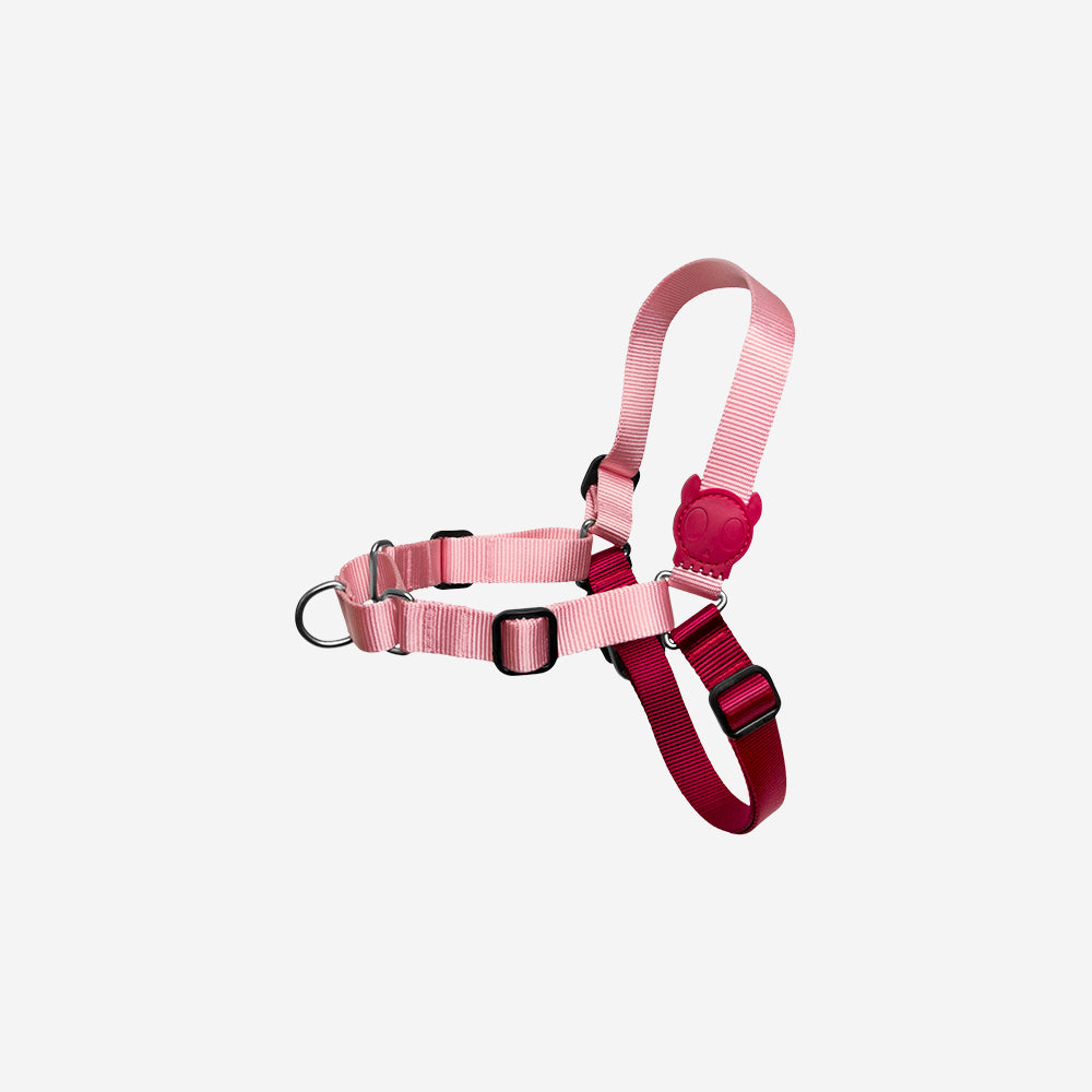 Blink | Soft-Walk Harness