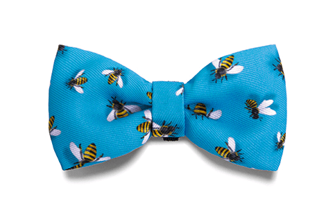 Buzz | Dog Bow Tie