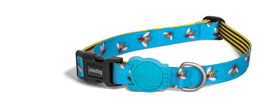 Buzz | Dog Collar