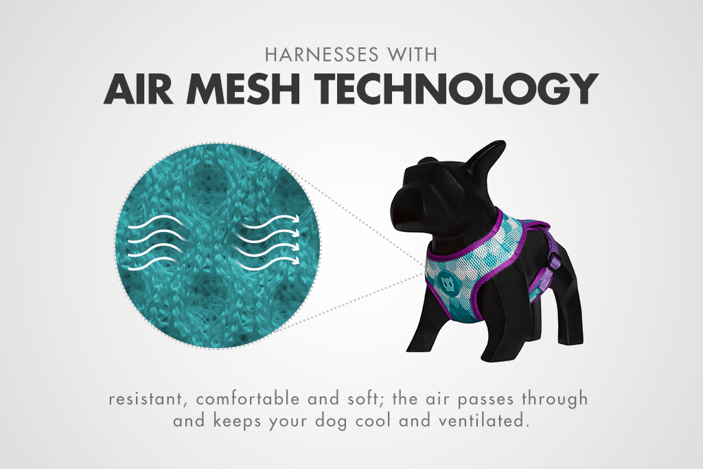 Barracuda | Mesh Plus Dog Harness