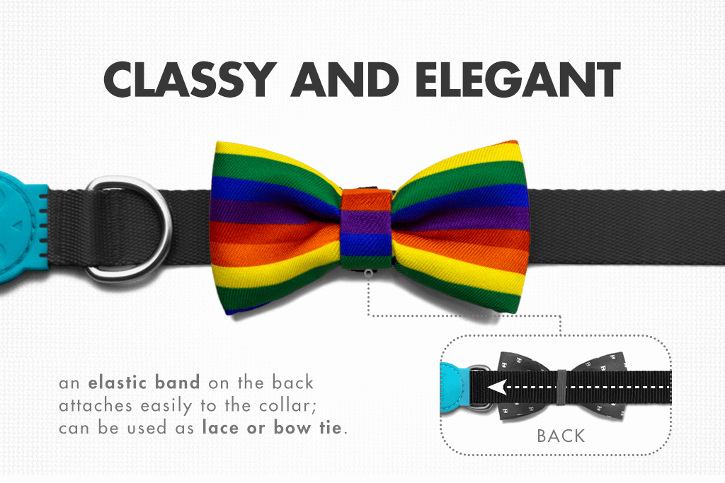 Proud - Gay Pride Bow Tie | Zee.Dog
